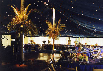 Aa Marquees Ltd Marquee Hire For Hampshire Wiltshire